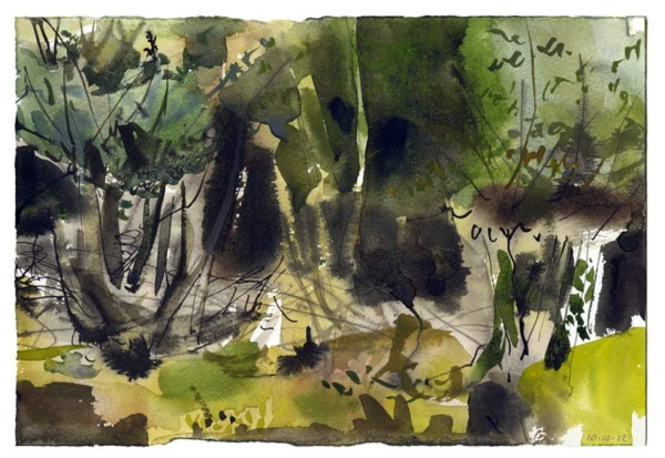 Coppice-2. Lower woods 10.10.12 – 280mm x 190mm – Watercolour – £490 at The Dolby Gallery Oundle