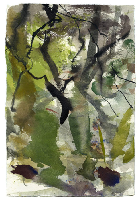 Oak woodland 1. 190mm x 280mm – Watercolour – £520 at The Dolby Gallery Oundle